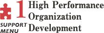 High Performance Organization Development